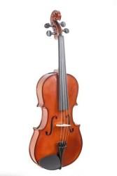 Almira - Almira CNV-15 Viola (38cm-15