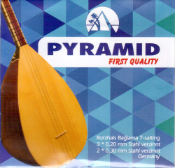 Pyramid - Pyramid First Quaility Uzun Sap Bağlama Teli (020)