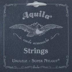 Aquila - Aquila 104U Concert Ukulele Teli (Low G)
